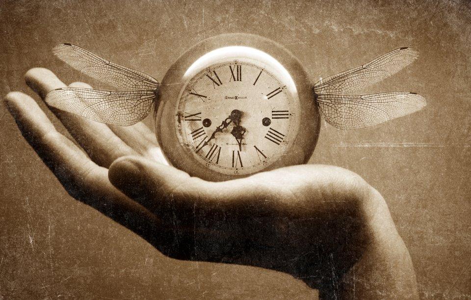 logo el tiempo literario